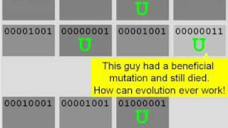 How Evolution REALLY Works, Part I