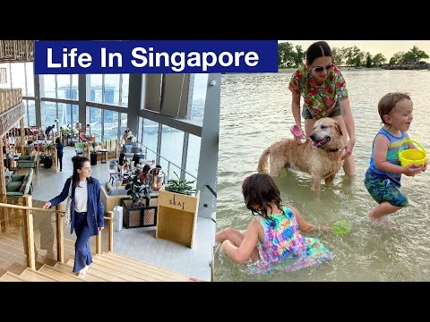Expat life in Singapore. High tea, amazing colourful street, beach for dogs.