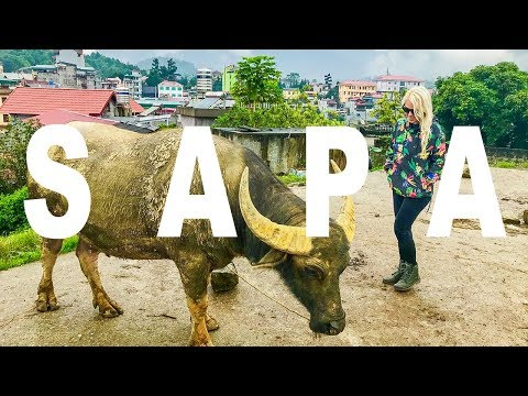 Night Train to Sapa | Bac Ha Market
