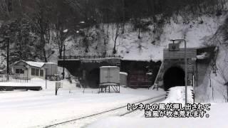小幌駅を訪問していたら珍しいのが通って行った thumbnail