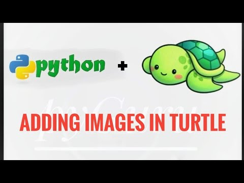 Adding Images to Turtle Canvas