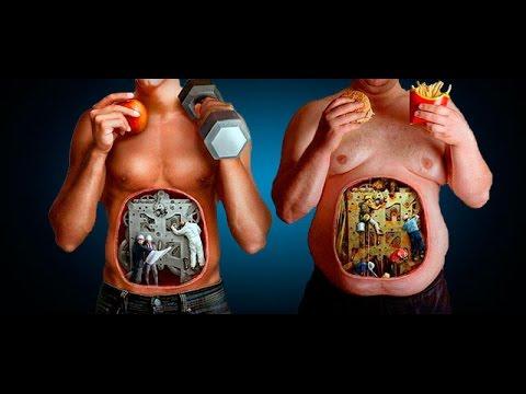 Как сжигаются жиры. Описание процесса. Виды