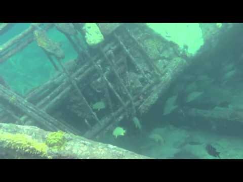 Sapona Shipwreck, Bimini