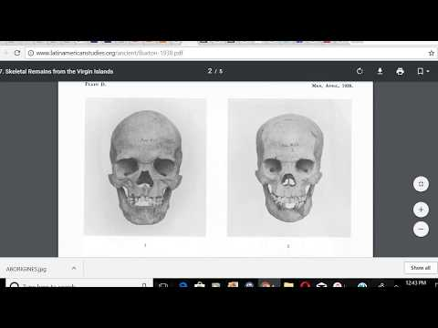 PRE COLUMBIAN NEGRO SKULLS FOUND IN THE WEST INDIES, AMERICA IS A NEGRO CONTINENT