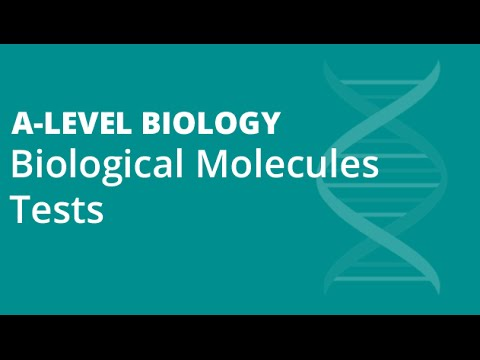 Benedict's, Biuret, Starch & Lipid Tests | A-level Biology | OCR, AQA, Edexcel