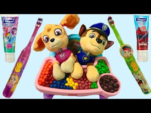 Paw Patrol Skye Chases Puppies Eat Skittles Brush Teeth Learning | Fizzy Fun Toys