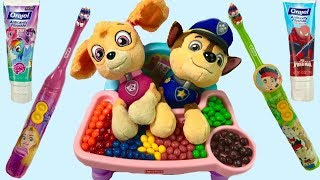 Paw Patrol Skye Chases Puppies Brush Their Teeth | Fizzy Fun Toys