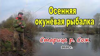 Один день окуневой рыбалки Микроджиг