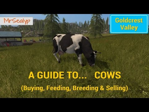 Farming Simulator 17 PS4: A Guide to... Cows (Buying, Feeding, Breeding & Selling)