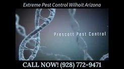 Extreme Pest Control Wilhoit Arizona
