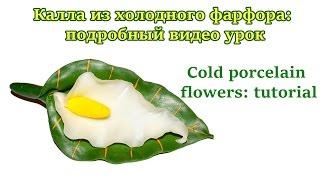Cold porcelain flowers: tutorial. Калла из холодного фарфора: подробный видео урок(Ну что ж, это видео о том, как создаются цветы из холодного фарфора. Лепка из фарфора, это нечто иное, как..., 2016-02-20T12:22:27.000Z)