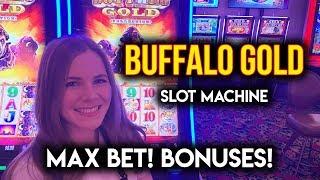 Buffalo Gold Slot Machine! MAX BET BONUSES!!