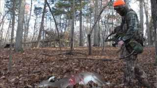 NC self filmed bow hunt doe kill