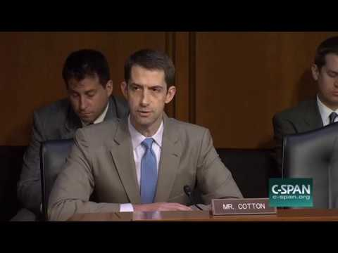 Tom Cotton Contrasts Trump and Obama on Russia