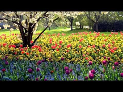 ✿ андрей весенин весну у двоих не отнять ✿.