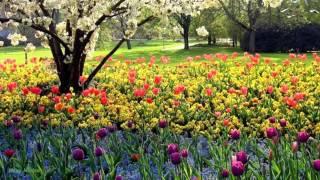 Скачать песни андрея весенина весну у двоих не отнять.