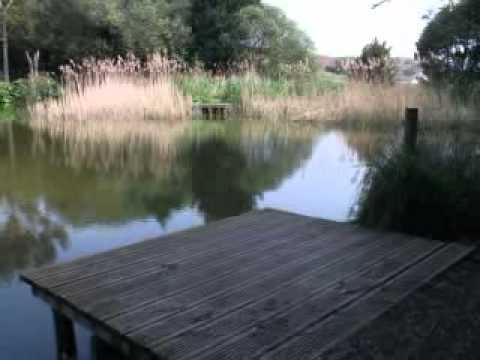 Cofton Campsite (fishing Lake)