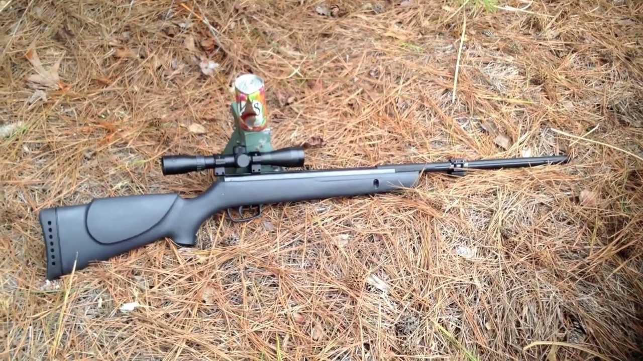 Gamo Big Cat  Pellet Gun