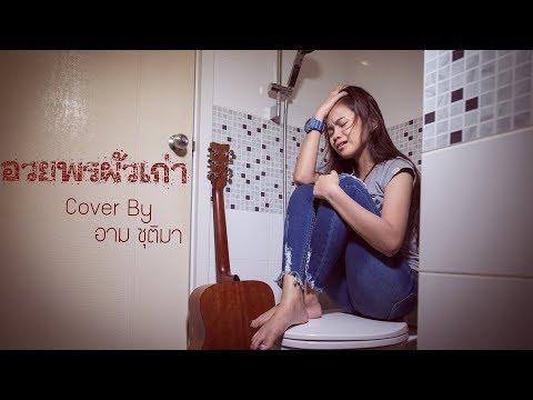 อวยพรผัวเก่า Cover By อาม ชุติมา【Cover Version】