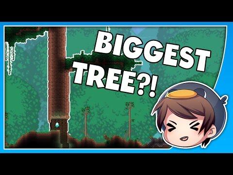 DEEPEST TREE IN TERRARIA?! // SEED SPOTLIGHT