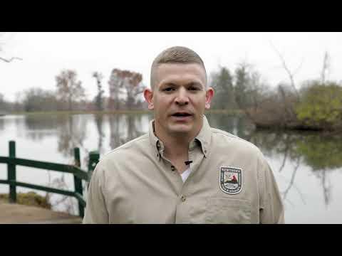 Waterfowl Hunting Seasons In Kentucky
