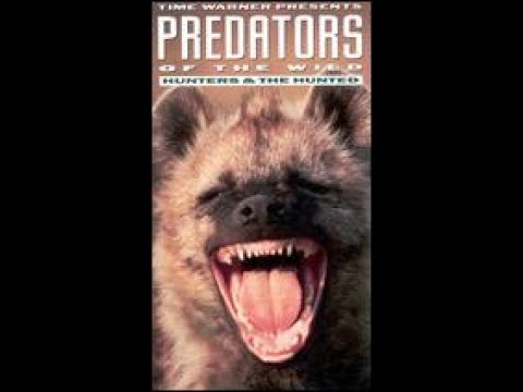 Predators Of The WIld: Hunters and the Hunted (1993)