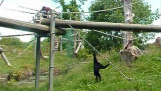 The Durrell Wildlife Park