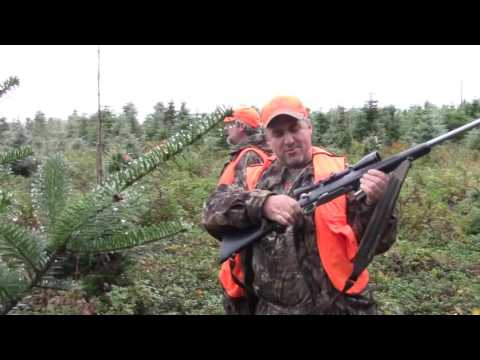 moose hunt  chasse orignal 2016 a jean marc castonguay