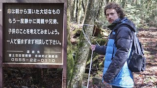 "I visited the ""suicide forest"" in Japan ..."