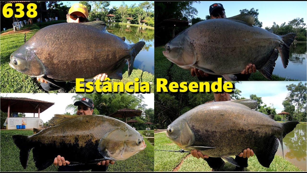 Tambas, Tambas e mais Tambas na Estância Resende - Programa Fishingtur na TV 638