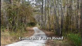 519 Acres Subdivided Into 5 Tracts, Oconee County, S.C.