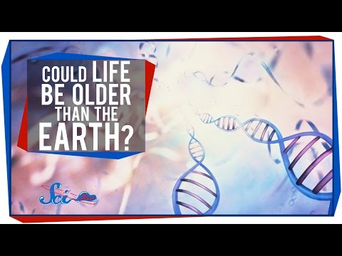 Could Life Be Older Than Earth?