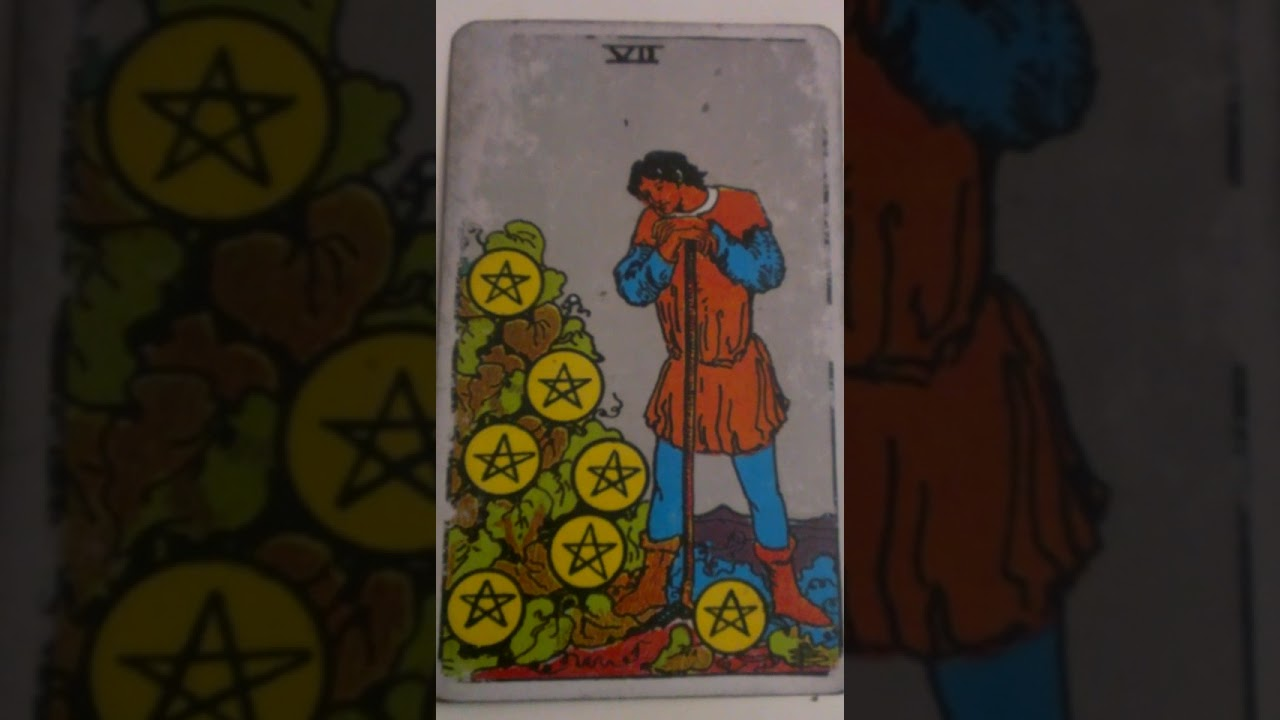 The Seven of Pentacles as Feelings in a Love Reading