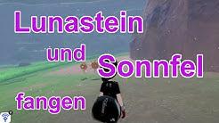 Lunastein (Schild) und Sonnfel (Schwert) fangen   Pokemon Schwert und Schild