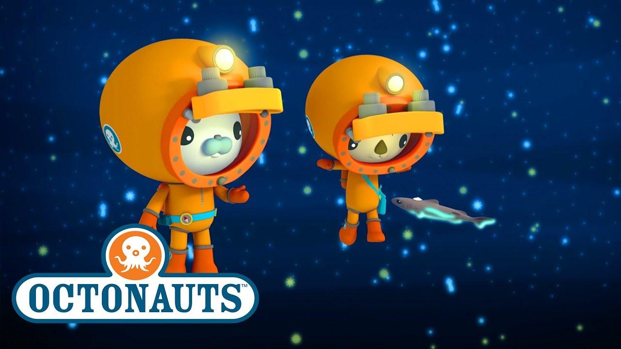 Octonauts - Dwarf Lantern Shark | Helping Fishes ...