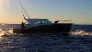 Dickey Boats Semifly 32