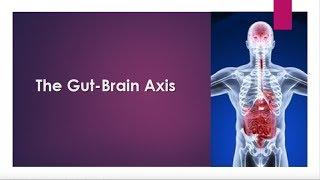 Understanding the Gut-Brain Connection with Kiran Krishnan