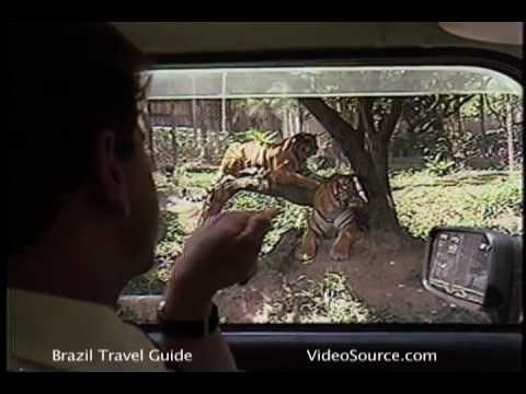 Zoological Gardens of Brazil