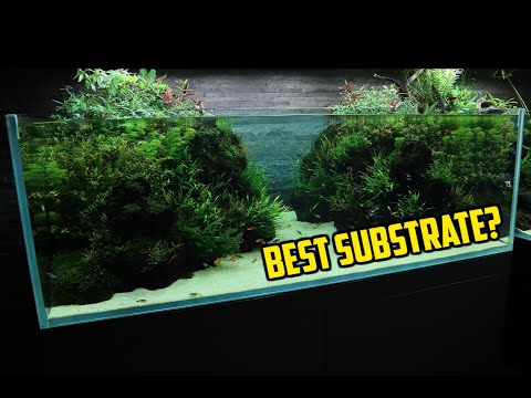 This Is The BEST SUBSTRATE For Your AQUARIUM!