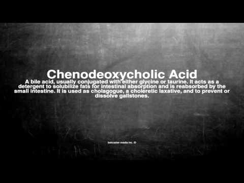 Medical vocabulary: What does Chenodeoxycholic Acid mean
