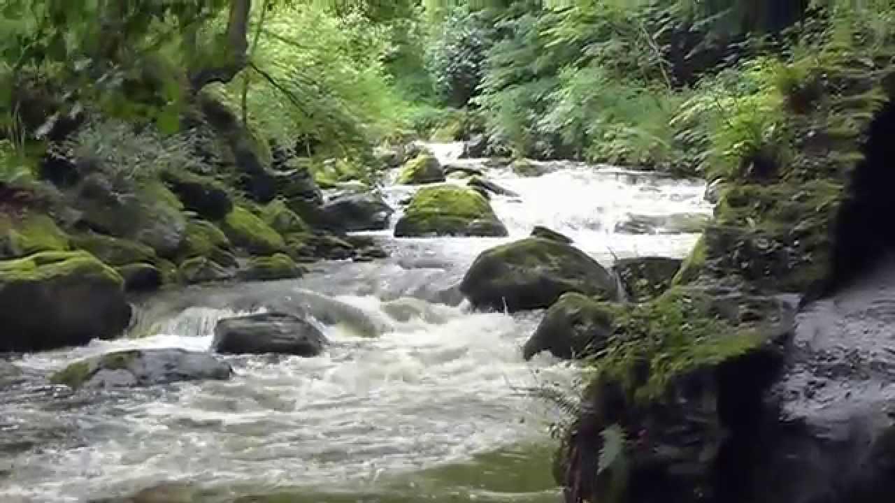 waters meet