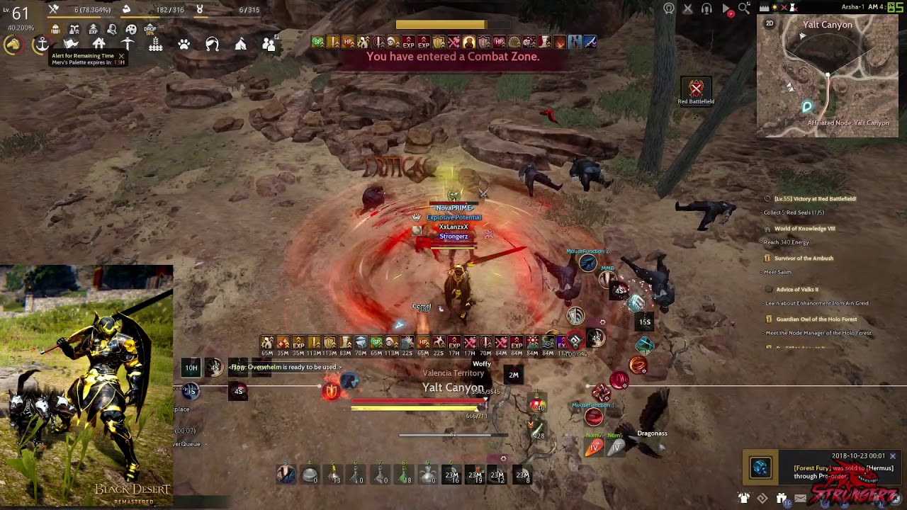 Black Desert - Whole's Warrior Skill Add-On Guide - YouTube