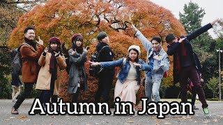 Autumn is The Best Season (Tokyo Trip) Tokyo - Shinjuku - Harajuku