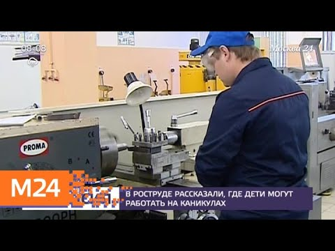 В Роструде рассказали, где дети могут работать на каникулах - Москва 24