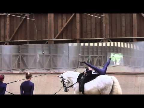 Bild: VoltigierenTV - Equestrian Vaulting - Voltigieren