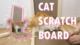 We built a scratcher for our cats