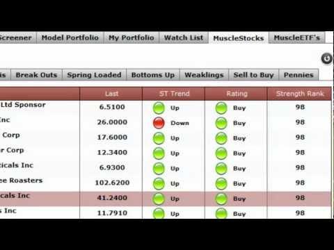 Market Trend Signal - MuscleStocks Navigation