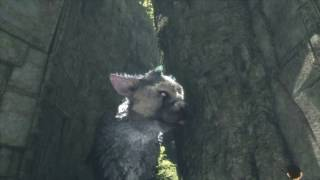 The Last Guardian - Part 2 First Ruins: Trico Scared of Glass Eye (Destroy) Barrel Treat Location