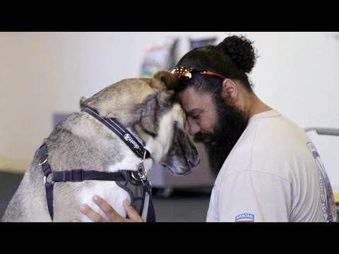 Veterans and Shelter Dogs Become Buddies for Life Through California Program