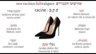 Racine êkev